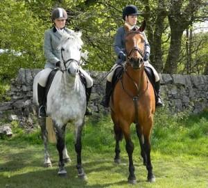 Horseback Riding Is More Than Giddyup!